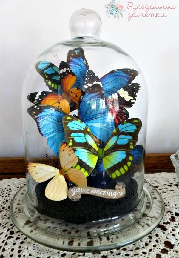 Декоративные бабочки под стеклянным колпаком 1