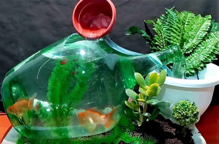 Аквариум с фонтаном из бутылки своими руками