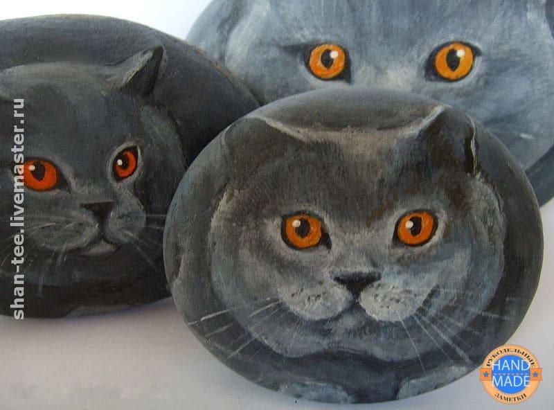 камни коты